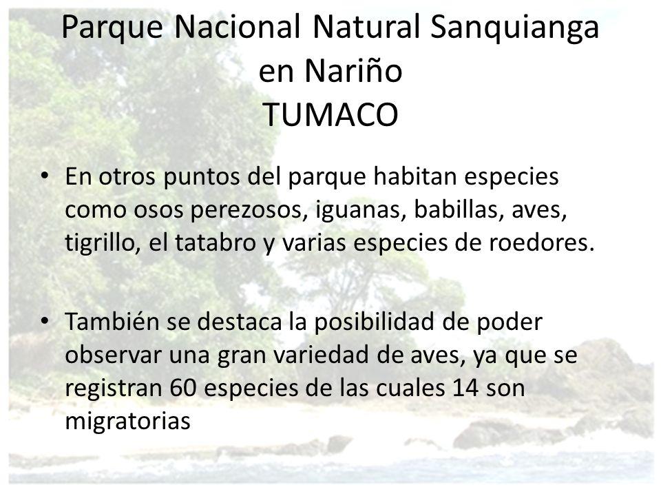 Parque Nacional Natural Sanquianga en Nariño TUMACO En otros puntos del parque habitan especies como osos perezosos, iguanas, babillas, aves, tigrillo