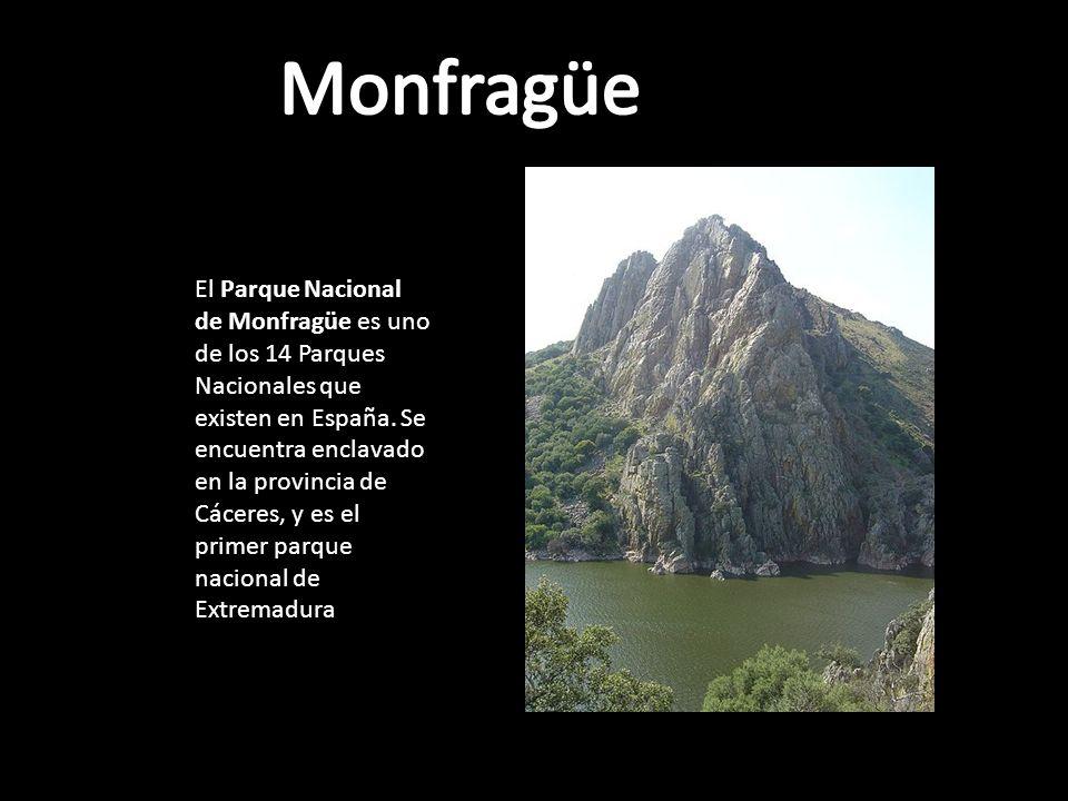 El Parque Nacional de Monfragüe es uno de los 14 Parques Nacionales que existen en España.
