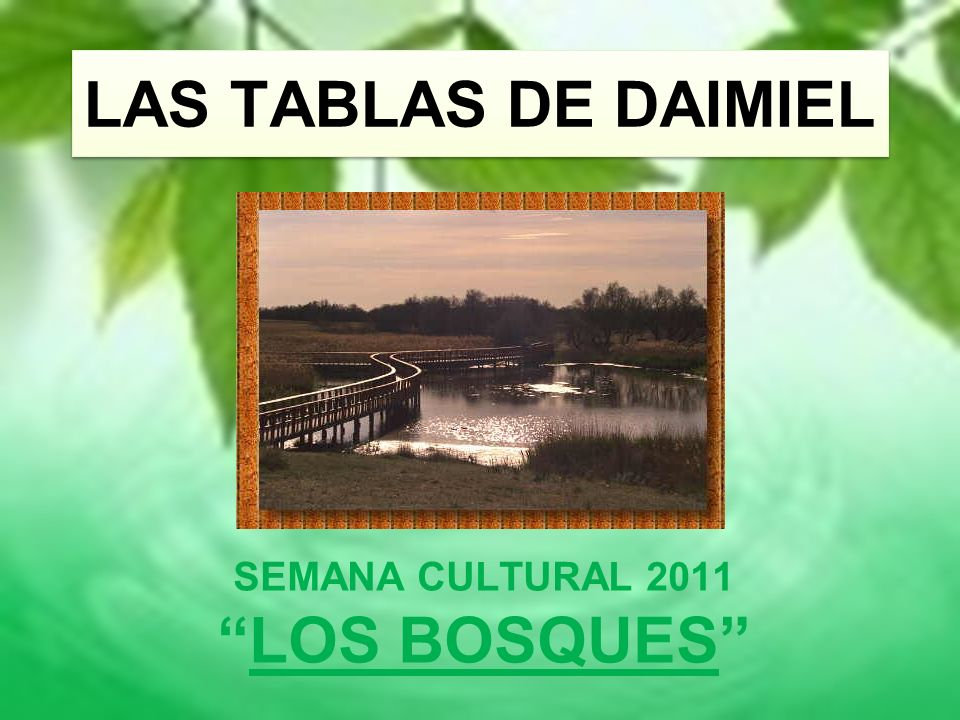 LAS TABLAS DE DAIMIEL SEMANA CULTURAL 2011 LOS BOSQUES