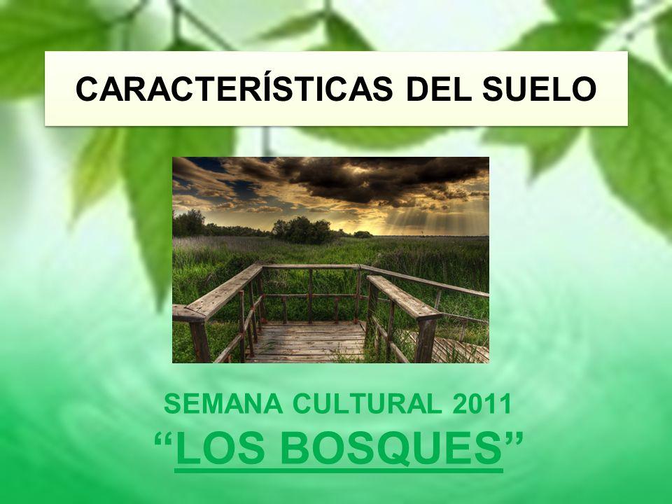CARACTERÍSTICAS DEL SUELO SEMANA CULTURAL 2011 LOS BOSQUES