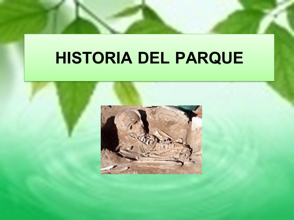HISTORIA DEL PARQUE