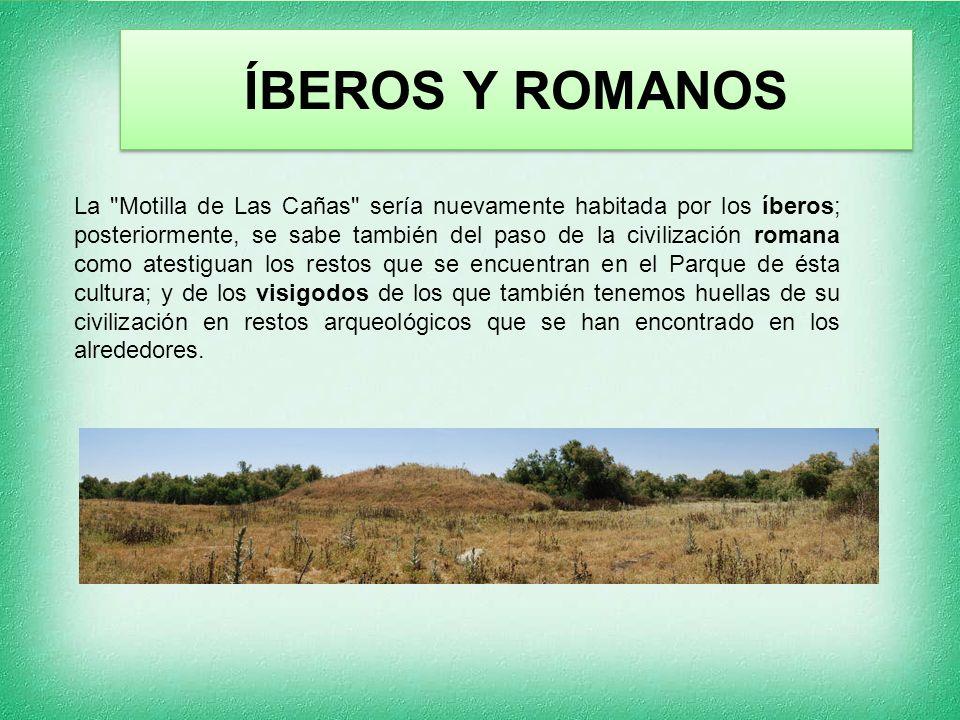 ÍBEROS Y ROMANOS La