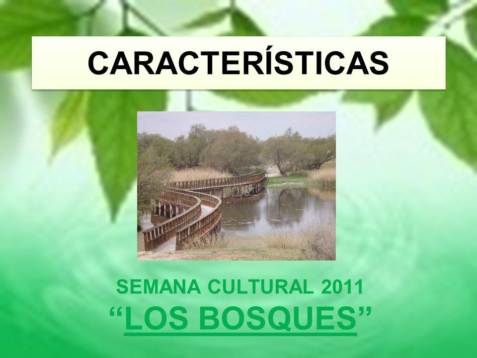 CARACTERÍSTICAS SEMANA CULTURAL 2011 LOS BOSQUES