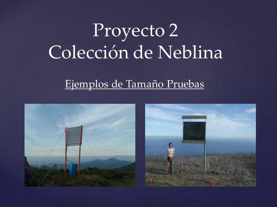 Proyecto 2 Colección de Neblina Ejemplos de Tamaño Pruebas