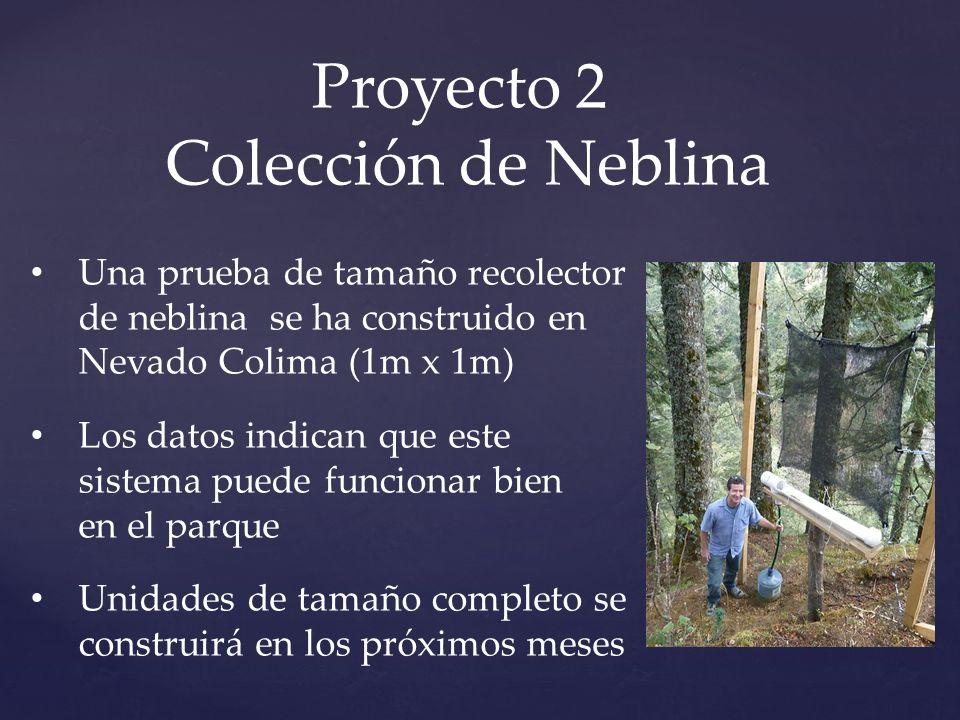 Proyecto 2 Colección de Neblina Una prueba de tamaño recolector de neblina se ha construido en Nevado Colima (1m x 1m) Los datos indican que este sistema puede funcionar bien en el parque Unidades de tamaño completo se construirá en los próximos meses