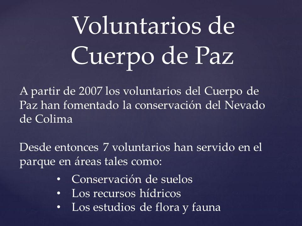 Voluntarios de Cuerpo de Paz A partir de 2007 los voluntarios del Cuerpo de Paz han fomentado la conservación del Nevado de Colima Desde entonces 7 vo