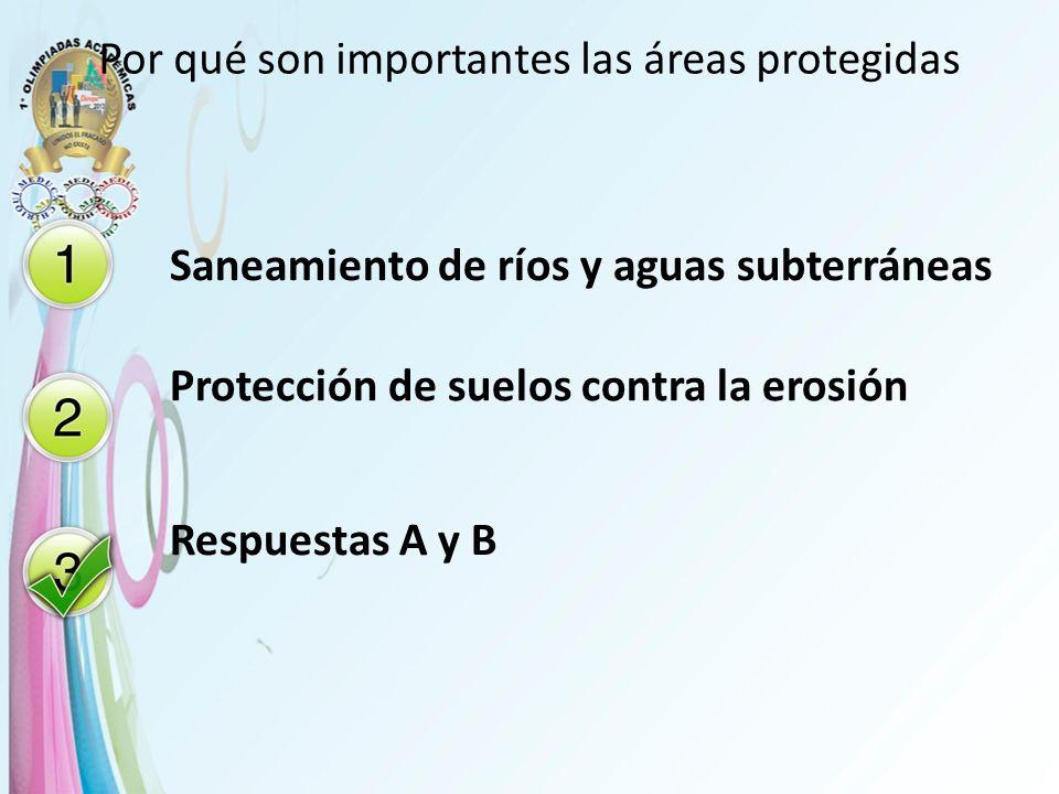 Por qué son importantes las áreas protegidas Saneamiento de ríos y aguas subterráneas Protección de suelos contra la erosión Respuestas A y B