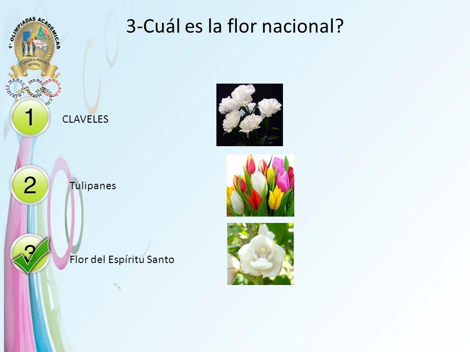 3-Cuál es la flor nacional? CLAVELES Tulipanes Flor del Espíritu Santo