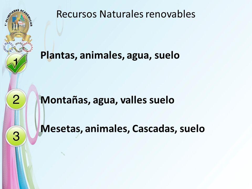 Recursos Naturales renovables Plantas, animales, agua, suelo Montañas, agua, valles suelo Mesetas, animales, Cascadas, suelo