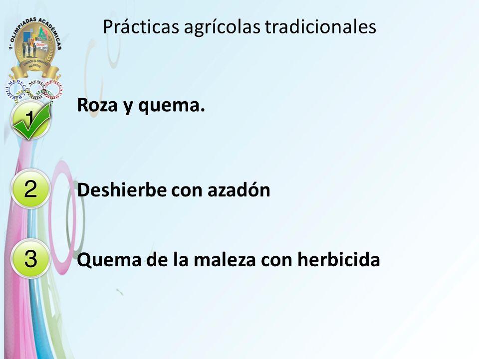 Prácticas agrícolas tradicionales Roza y quema. Deshierbe con azadón Quema de la maleza con herbicida
