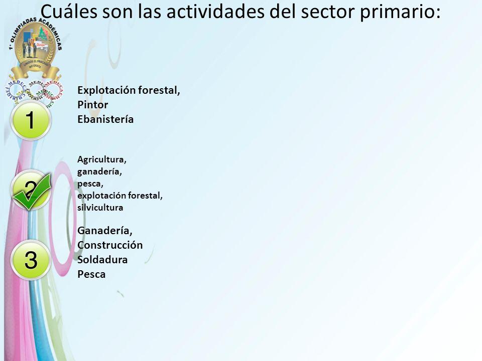 Cuáles son las actividades del sector primario: Explotación forestal, Pintor Ebanistería Agricultura, ganadería, pesca, explotación forestal, silvicul