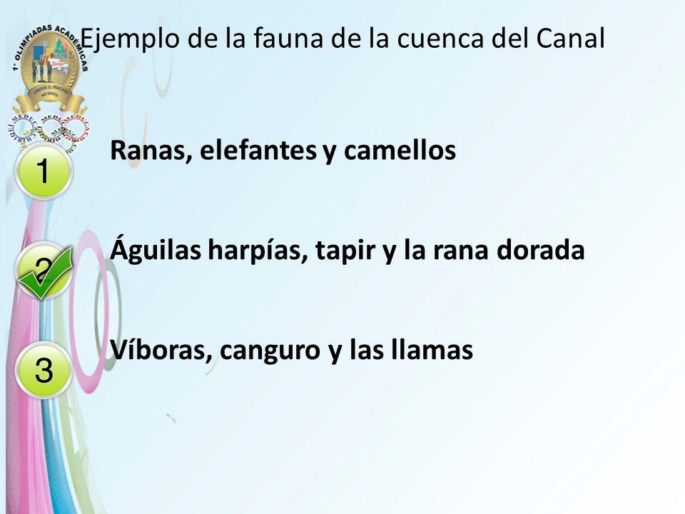 Ejemplo de la fauna de la cuenca del Canal Ranas, elefantes y camellos Águilas harpías, tapir y la rana dorada Víboras, canguro y las llamas
