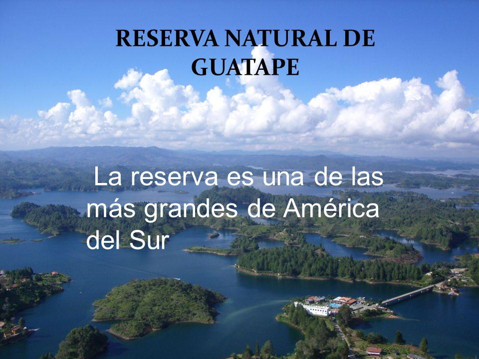 La reserva es una de las más grandes de América del Sur RESERVA NATURAL DE GUATAPE