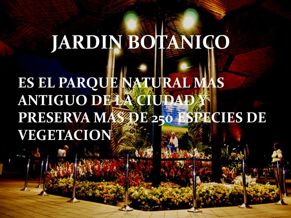 JARDIN BOTANICO ES EL PARQUE NATURAL MAS ANTIGUO DE LA CIUDAD Y PRESERVA MAS DE 250 ESPECIES DE VEGETACION