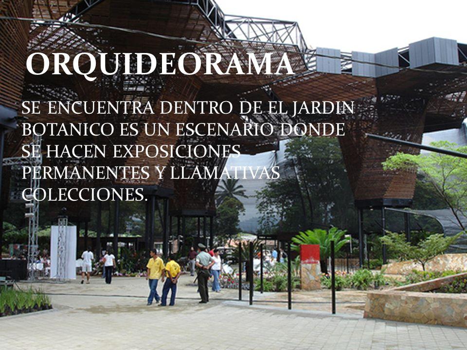 ORQUIDEORAMA SE ENCUENTRA DENTRO DE EL JARDIN BOTANICO ES UN ESCENARIO DONDE SE HACEN EXPOSICIONES PERMANENTES Y LLAMATIVAS COLECCIONES.