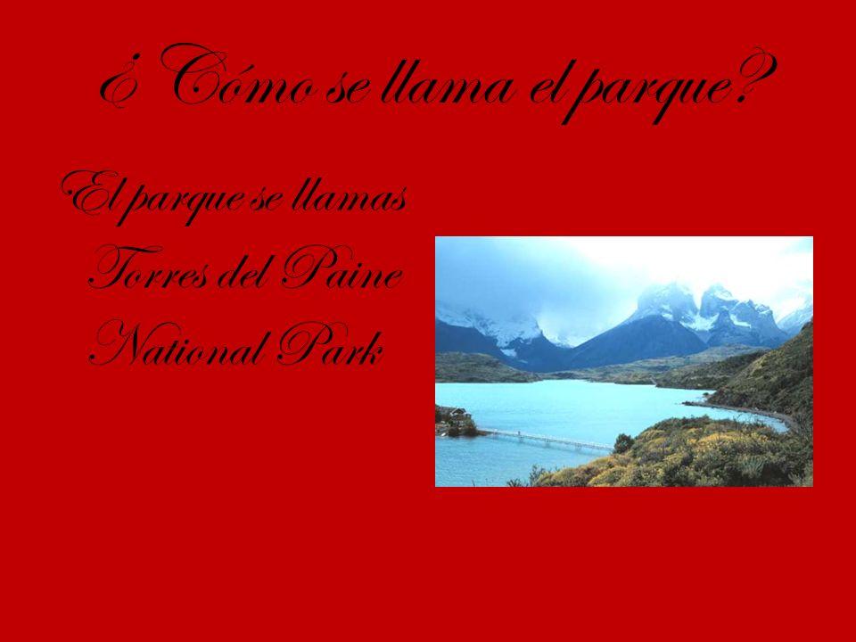 ¿ Cómo se llama el parque El parque se llamas Torres del Paine National Park