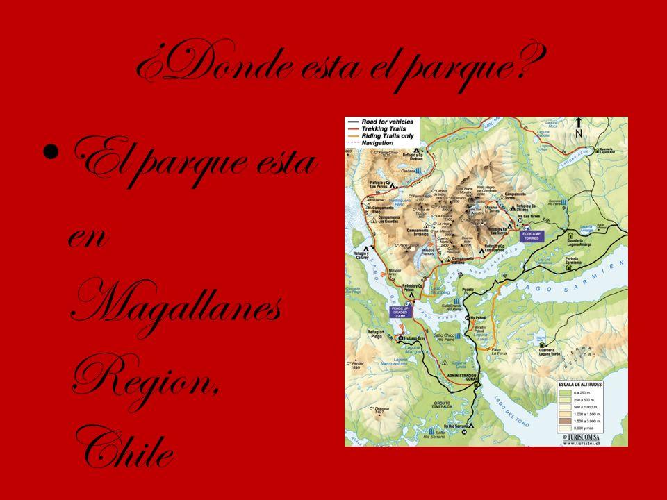 ¿Donde esta el parque El parque esta en Magallanes Region, Chile