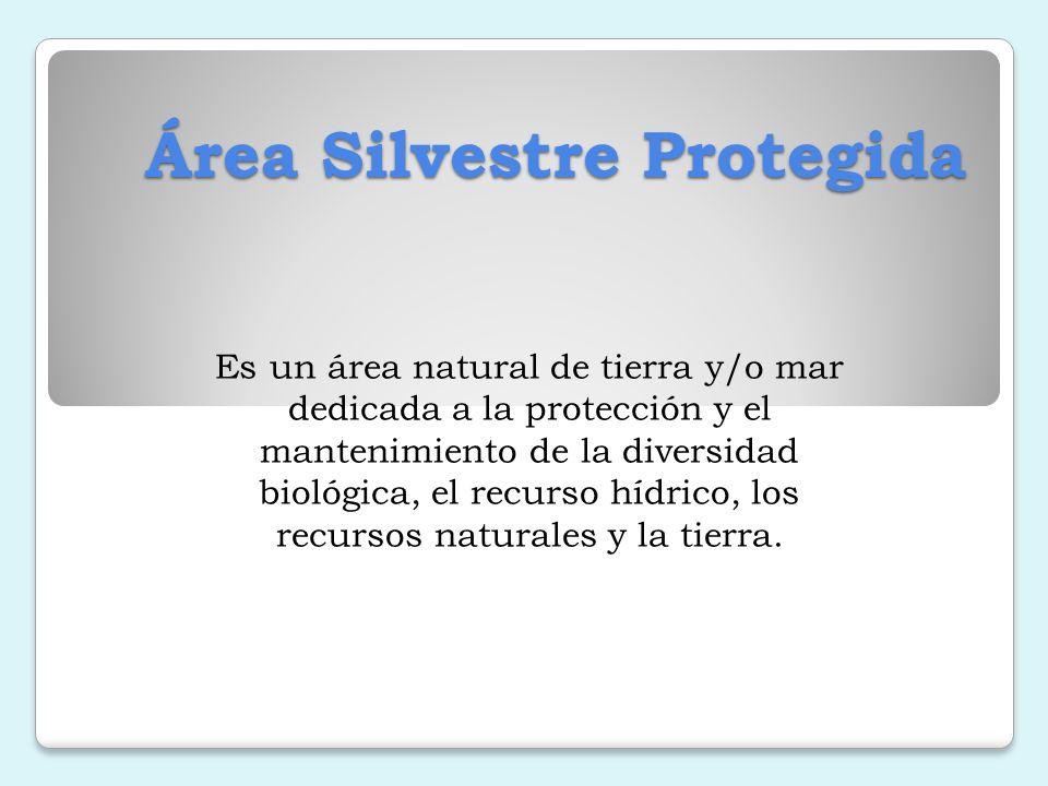 Objetivo La creación de diversos tipos de áreas protegidas con el fin de mantener los entornos naturales y regular su aprovechamiento manteniendo la sostenibilidad de los recursos que brinda.