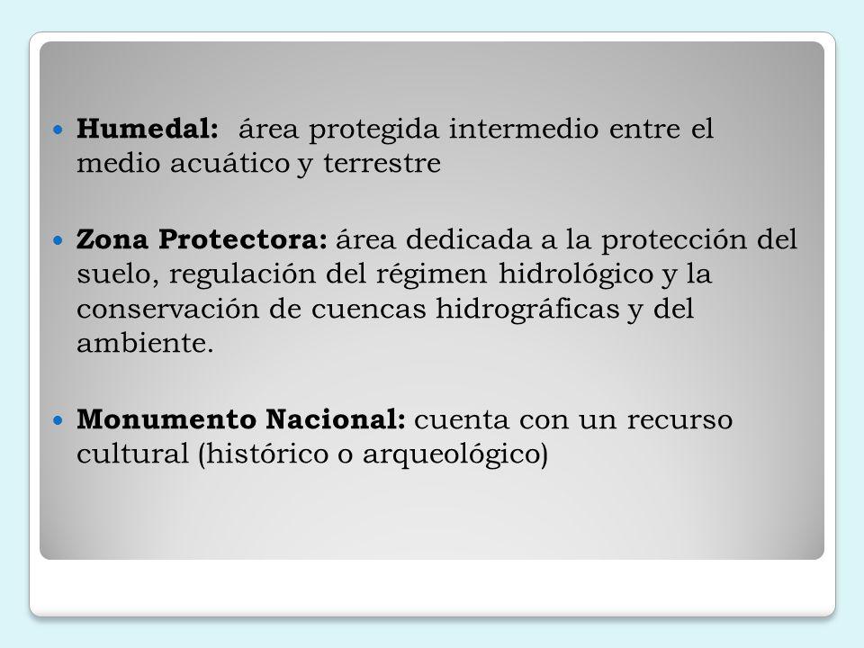 Importancia y dificultades de la relación Comunidad Zona de Amortiguamiento Falta de claridad por parte de la comunidad para un mejor aprovechamiento de los recursos del área protegida.
