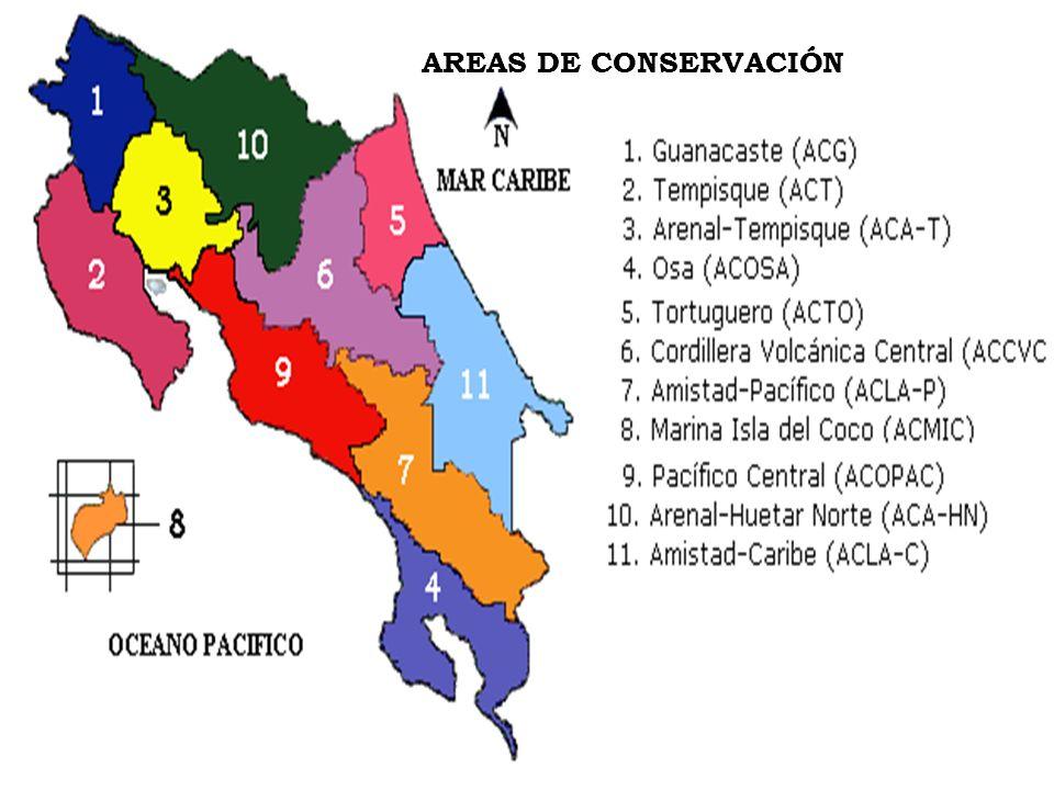 PROYECTO GRUAS-MINAE PROYECTO GRUAS-MINAE Se realizó en 1994-1995 Objetivo : identificar la situación de las áreas silvestres protegidas.
