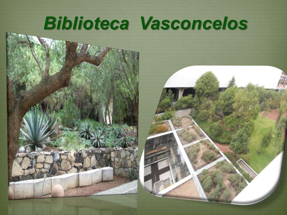 Biblioteca Vasconcelos Biblioteca Vasconcelos