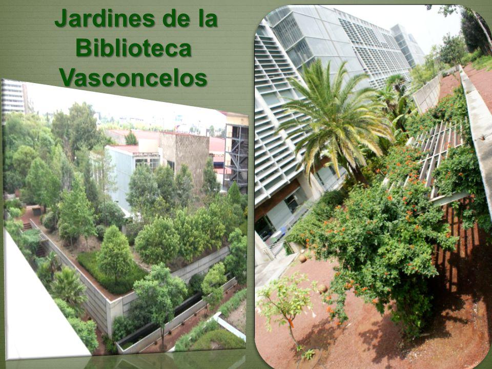 Jardines de la Biblioteca Vasconcelos Jardines de la Biblioteca Vasconcelos