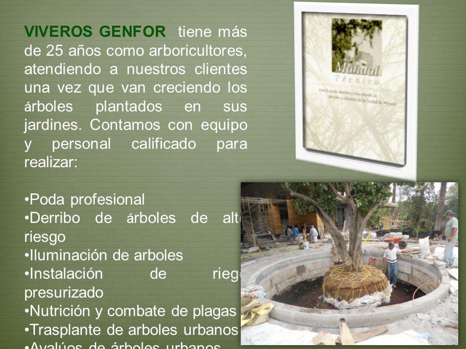 VIVEROS GENFOR tiene más de 25 años como arboricultores, atendiendo a nuestros clientes una vez que van creciendo los á rboles plantados en sus jardin