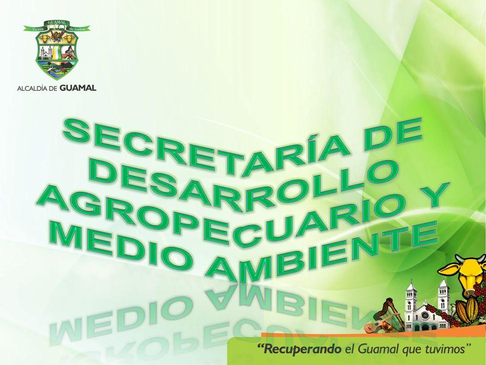 PROYECTOACTIVIDADES / POBLACION INCENTIVAR LA SIEMBRA DE CACAO 22 campesinos capacitados en 6 sesiones para analizar la importancia de la asociatividad de la empresa.