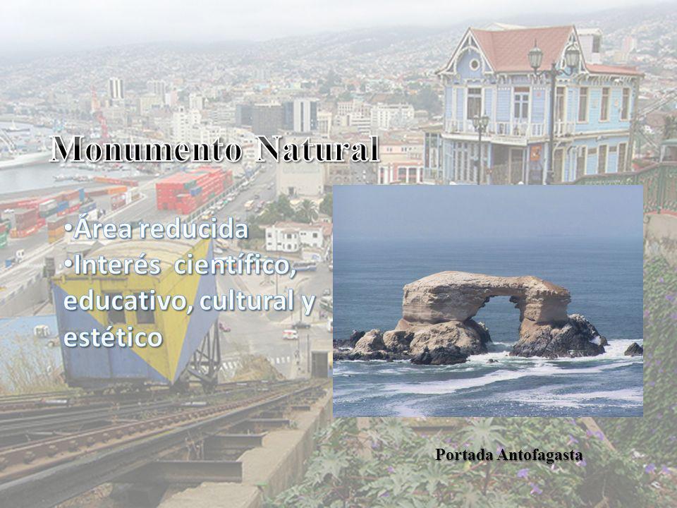 Portada Antofagasta