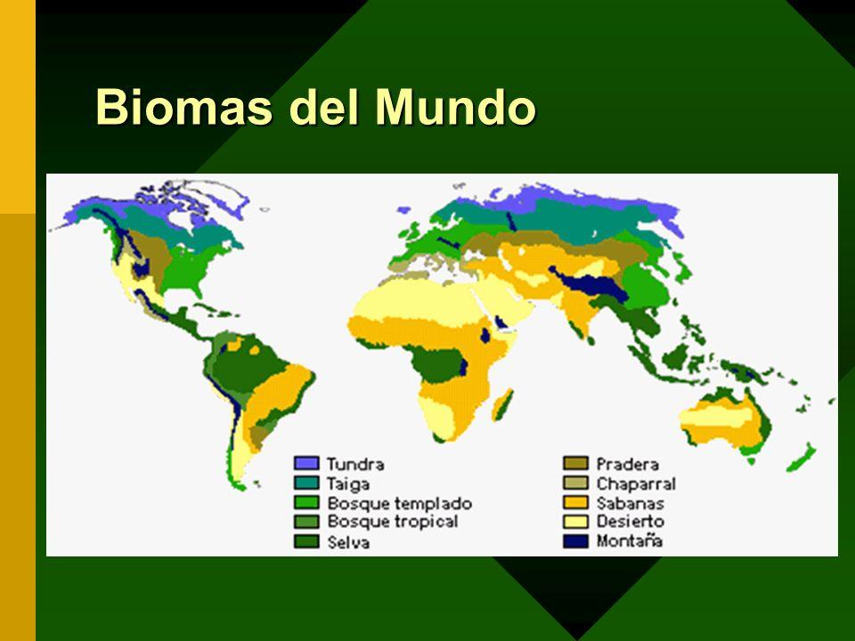 Distribución geográfica de las zonas de vida en Costa Rica