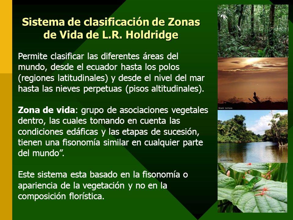 Calocitta formosaurraca azul Odocoilues virginianus venado Iguana iguana iguana Ctenosaura similis garrobo