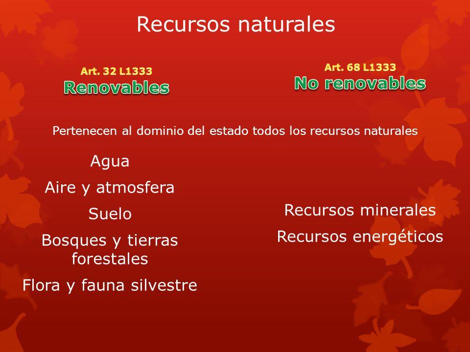 Recursos naturales Agua Aire y atmosfera Suelo Bosques y tierras forestales Flora y fauna silvestre Recursos minerales Recursos energéticos Pertenecen