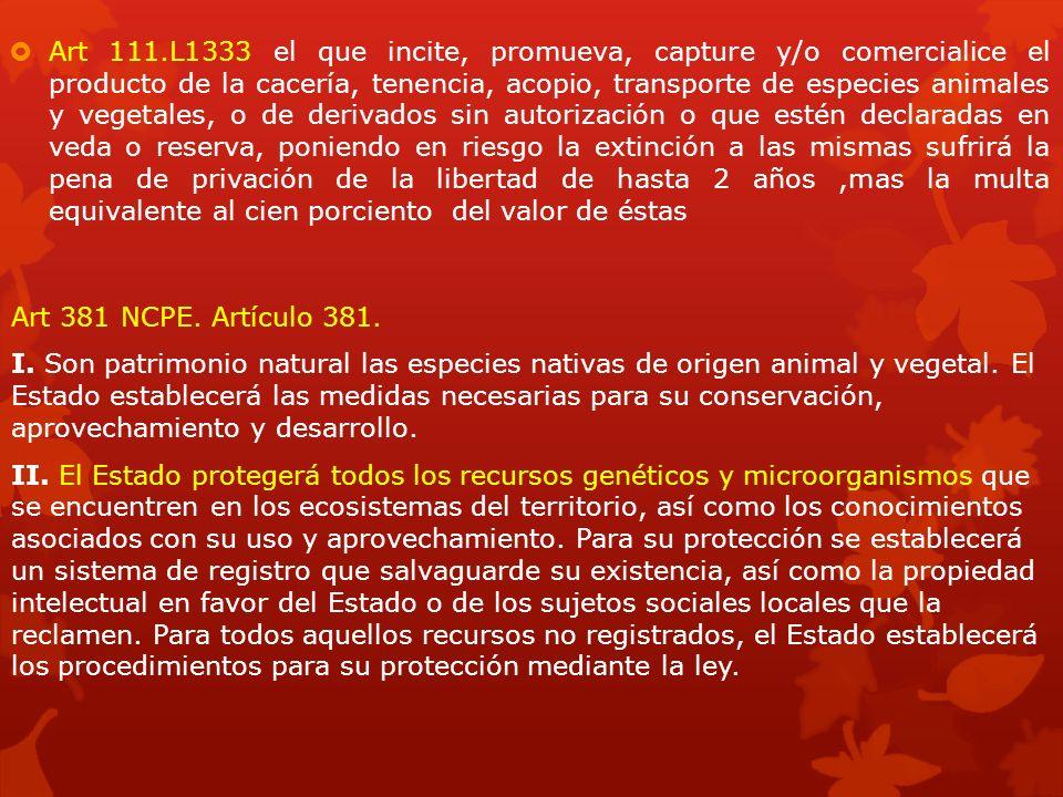 Art 381 NCPE. Artículo 381. I. Son patrimonio natural las especies nativas de origen animal y vegetal. El Estado establecerá las medidas necesarias pa