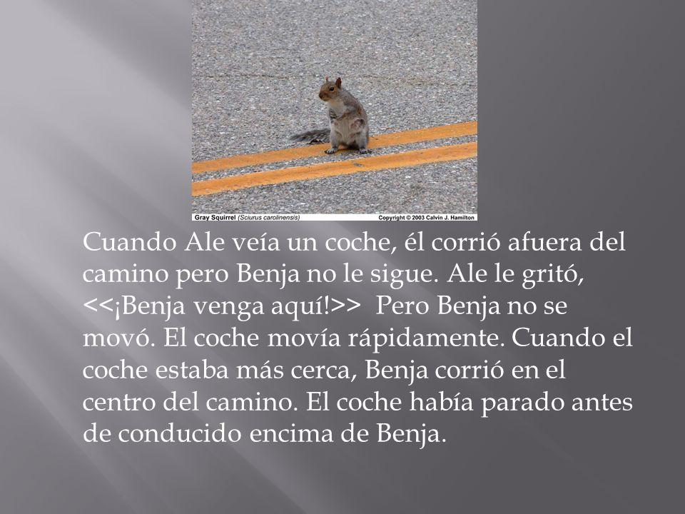 Cuando Ale veía un coche, él corrió afuera del camino pero Benja no le sigue. Ale le gritó, > Pero Benja no se movó. El coche movía rápidamente. Cuand