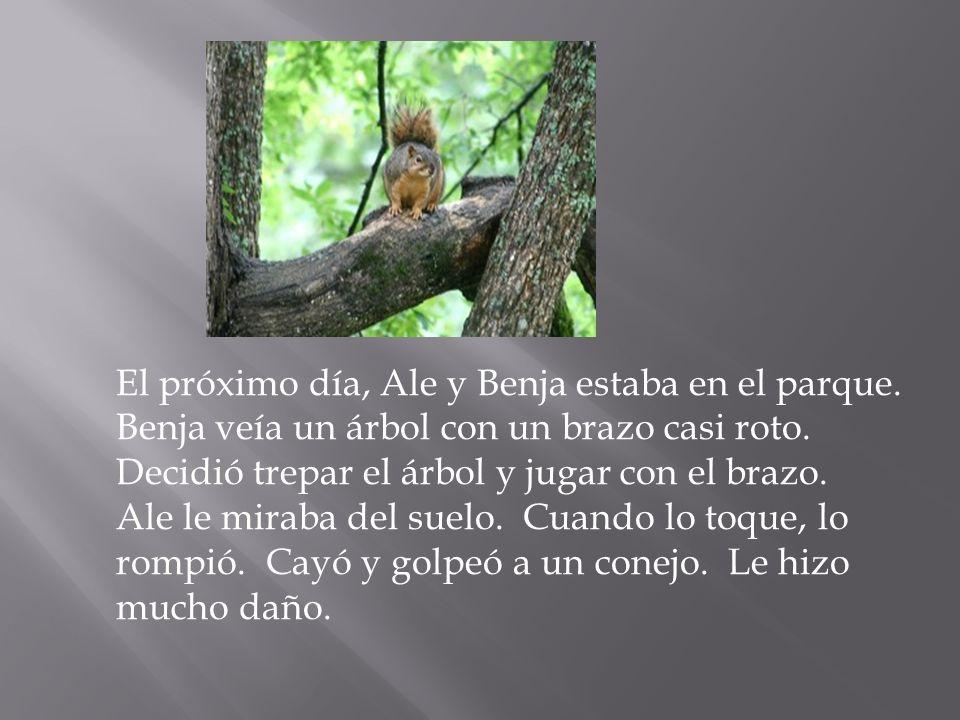 El próximo día, Ale y Benja estaba en el parque. Benja veía un árbol con un brazo casi roto. Decidió trepar el árbol y jugar con el brazo. Ale le mira