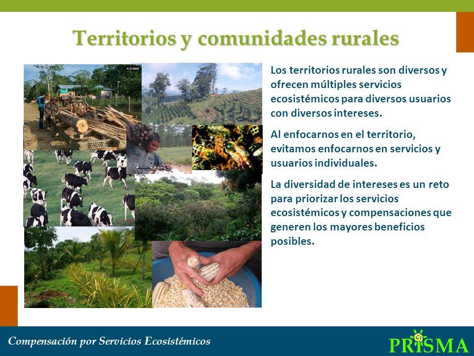Los territorios rurales son diversos y ofrecen múltiples servicios ecosistémicos para diversos usuarios con diversos intereses. Al enfocarnos en el te