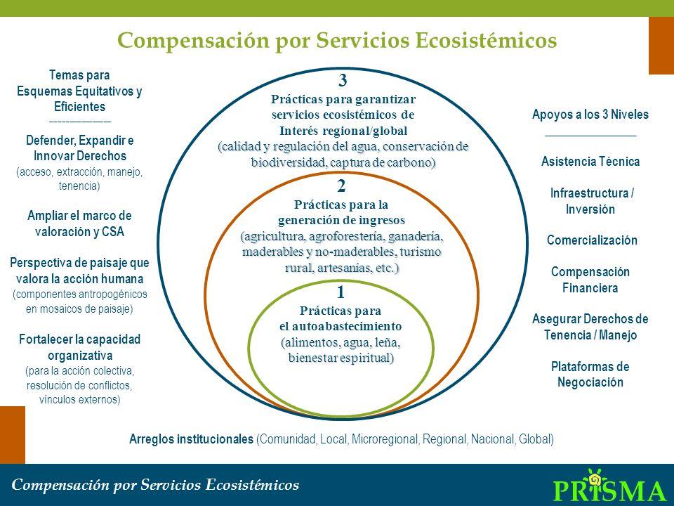 1 Prácticas para el autoabastecimiento (alimentos, agua, leña, bienestar espiritual) 2 Prácticas para la generación de ingresos (agricultura, agrofore