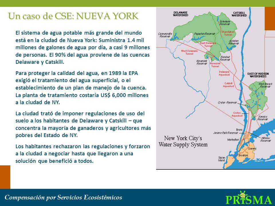 Un caso de CSE: NUEVA YORK El sistema de agua potable más grande del mundo está en la ciudad de Nueva York: Suministra 1.4 mil millones de galones de