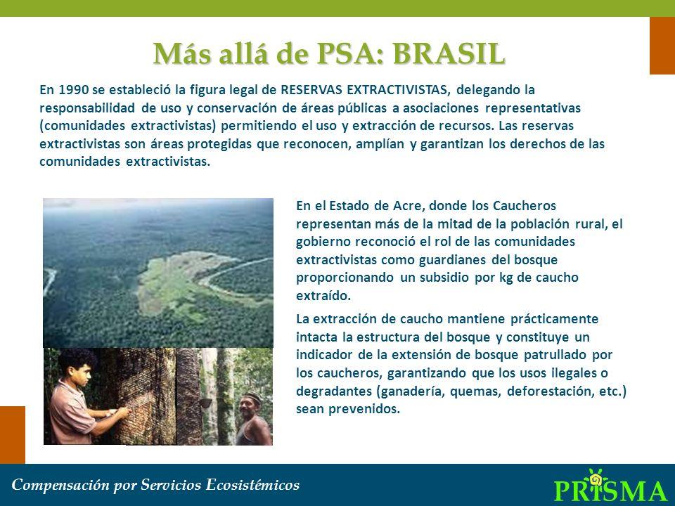 C ompensación por S ervicios E cosistémicos En el Estado de Acre, donde los Caucheros representan más de la mitad de la población rural, el gobierno r
