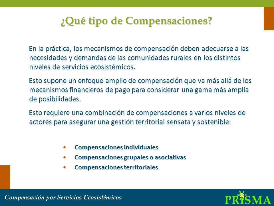 C ompensación por S ervicios E cosistémicos ¿Qué tipo de Compensaciones? En la práctica, los mecanismos de compensación deben adecuarse a las necesida