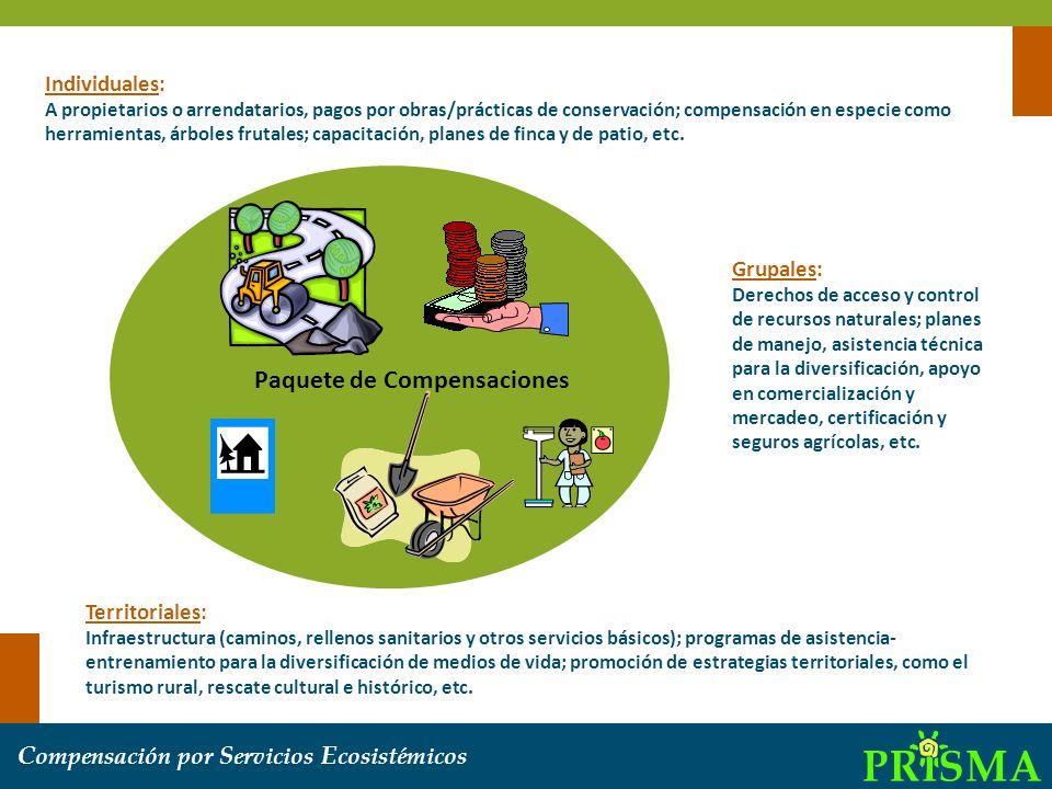 C ompensación por S ervicios E cosistémicos Individuales: A propietarios o arrendatarios, pagos por obras/prácticas de conservación; compensación en e