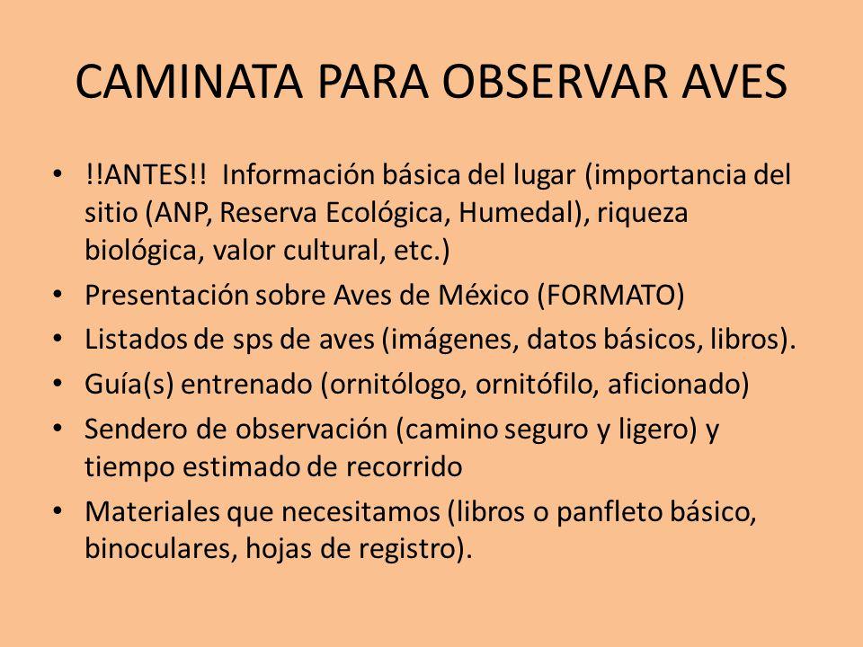 CAMINATA PARA OBSERVAR AVES !!ANTES!! Información básica del lugar (importancia del sitio (ANP, Reserva Ecológica, Humedal), riqueza biológica, valor