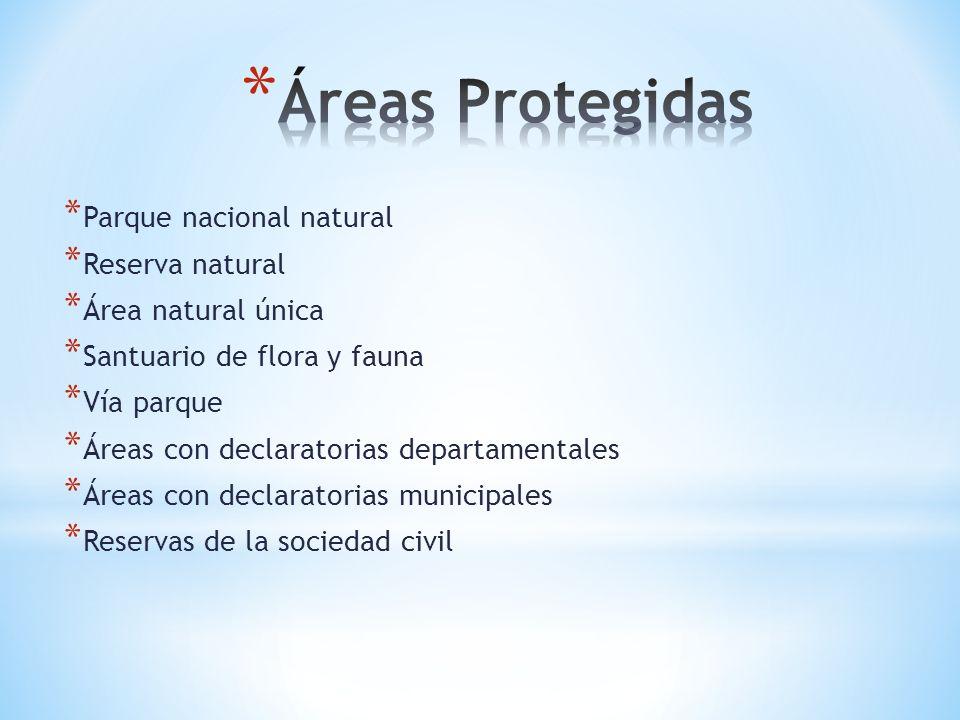* Parque nacional natural * Reserva natural * Área natural única * Santuario de flora y fauna * Vía parque * Áreas con declaratorias departamentales *