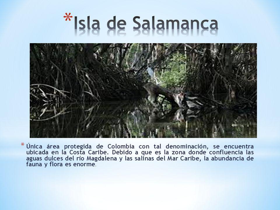 * Única área protegida de Colombia con tal denominación, se encuentra ubicada en la Costa Caribe. Debido a que es la zona donde confluencia las aguas