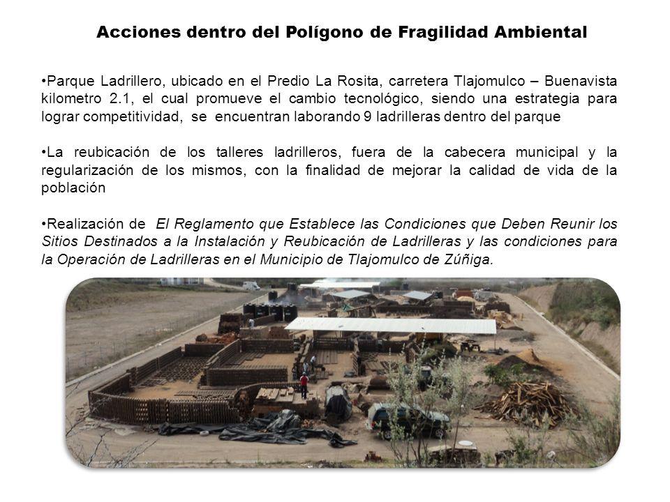 Acciones dentro del Polígono de Fragilidad Ambiental Parque Ladrillero, ubicado en el Predio La Rosita, carretera Tlajomulco – Buenavista kilometro 2.