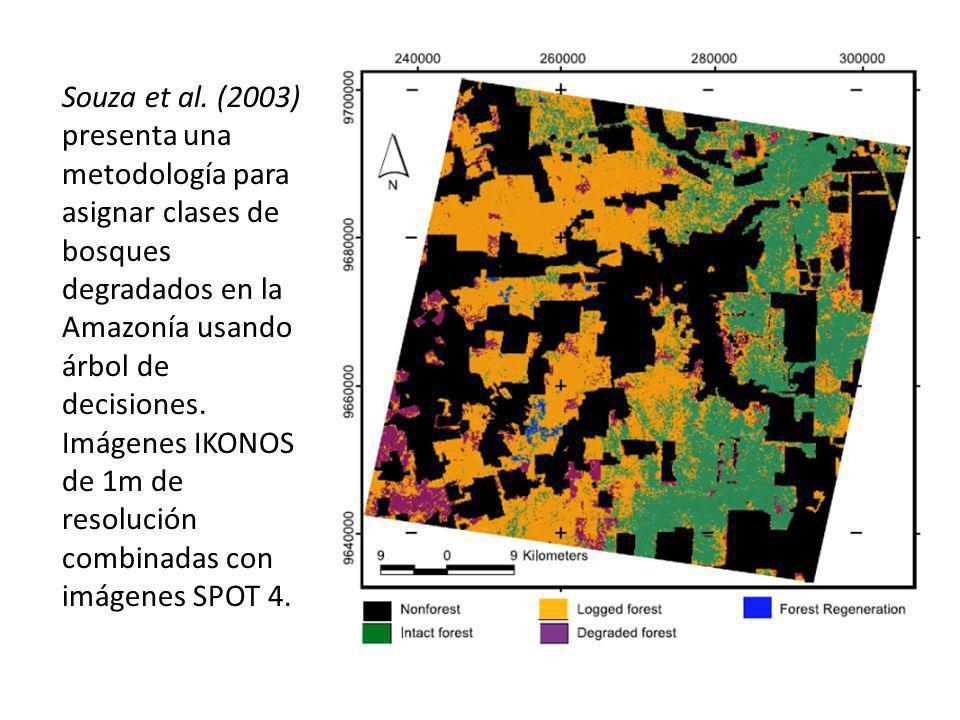 Souza et al. (2003) presenta una metodología para asignar clases de bosques degradados en la Amazonía usando árbol de decisiones. Imágenes IKONOS de 1