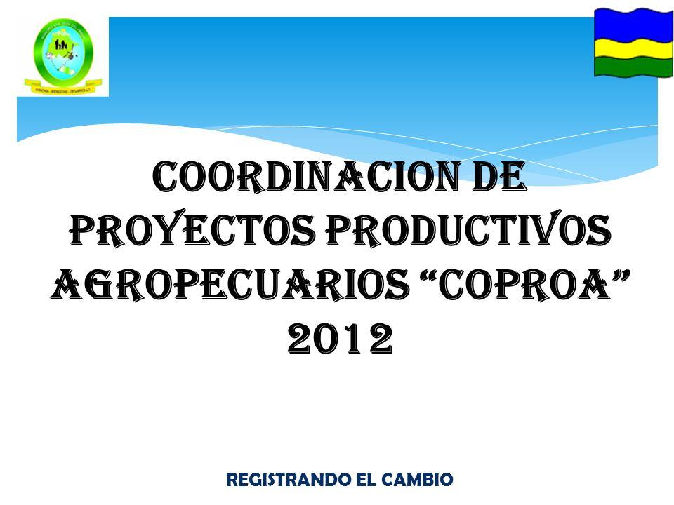 REGISTRANDO EL CAMBIO COORDINACION DE PROYECTOS PRODUCTIVOS AGROPECUARIOS COPROA 2012
