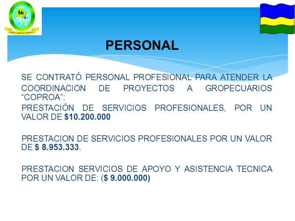 PERSONAL SE CONTRATÓ PERSONAL PROFESIONAL PARA ATENDER LA COORDINACION DE PROYECTOS A GROPECUARIOS COPROA: PRESTACIÓN DE SERVICIOS PROFESIONALES, POR