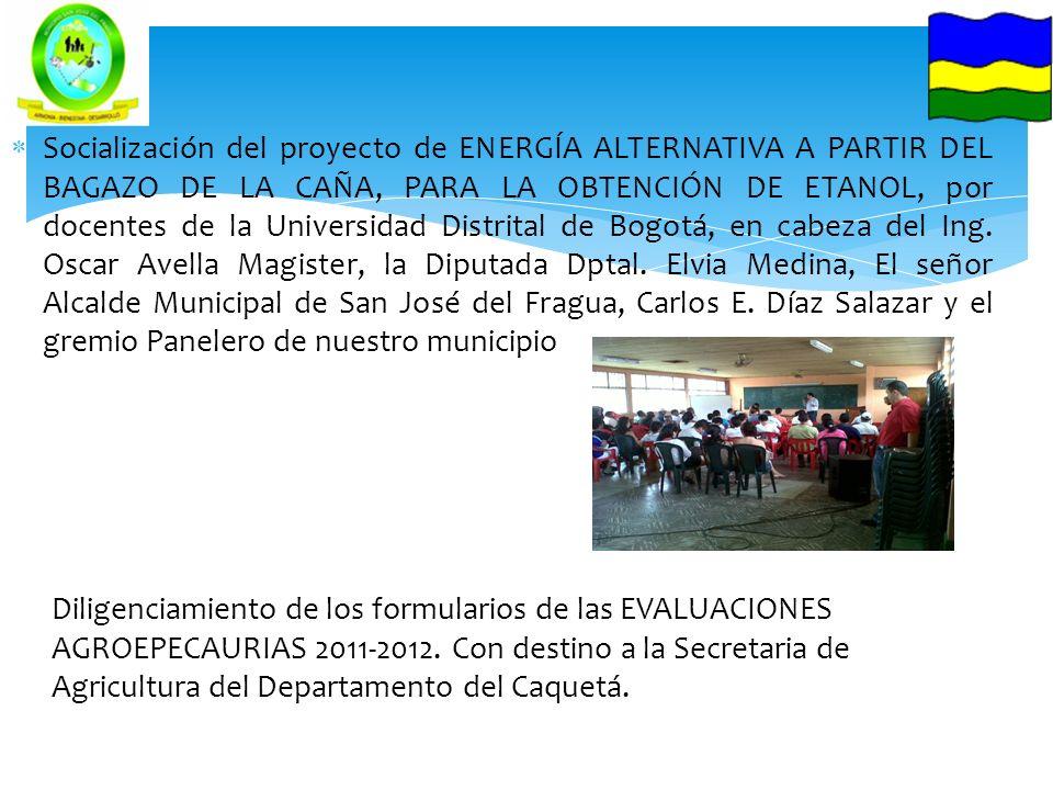 Socialización del proyecto de ENERGÍA ALTERNATIVA A PARTIR DEL BAGAZO DE LA CAÑA, PARA LA OBTENCIÓN DE ETANOL, por docentes de la Universidad Distrita