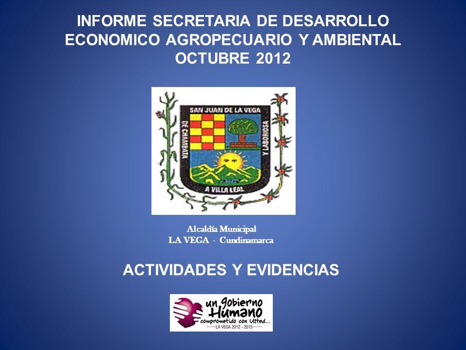 INFORME SECRETARIA DE DESARROLLO ECONOMICO AGROPECUARIO Y AMBIENTAL OCTUBRE 2012 Alcaldía Municipal LA VEGA - Cundinamarca ACTIVIDADES Y EVIDENCIAS